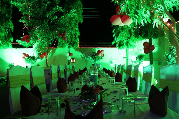 party-at-rockwood-restaurent-udaipur-rajasthan